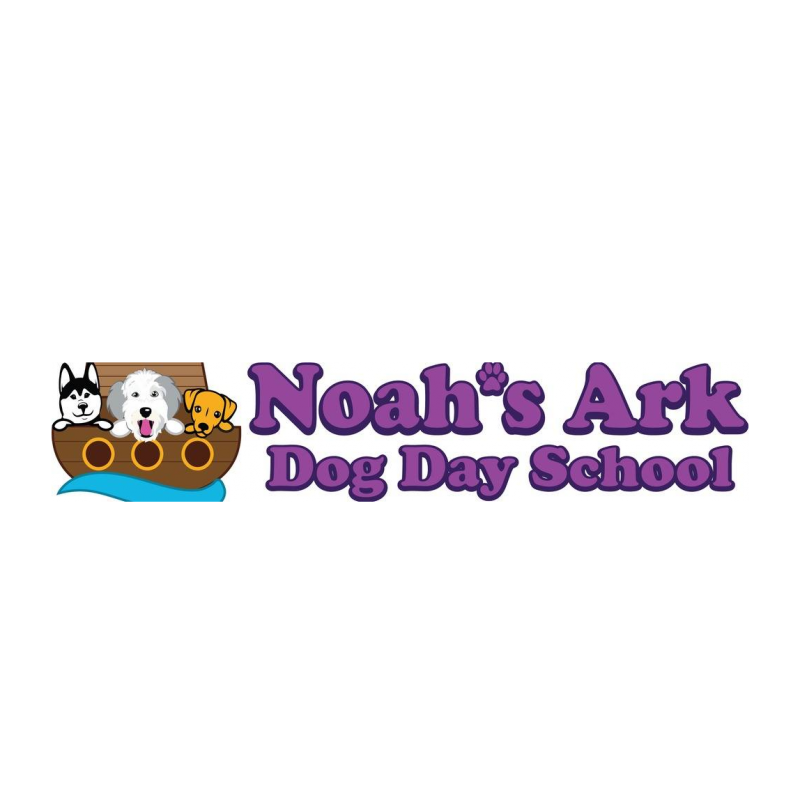 Noahs Ark Dog Day School