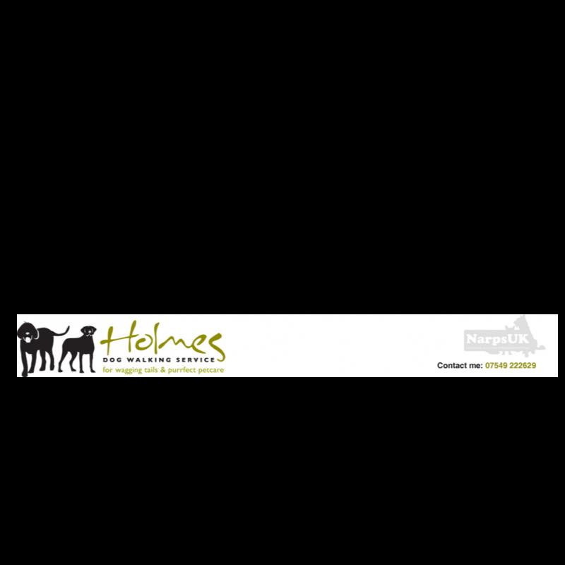 Holmes Dog Walking Service