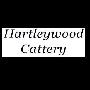 Hartleywood Cattery