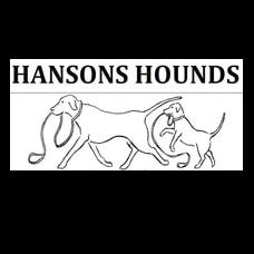 HANSONS HOUNDS